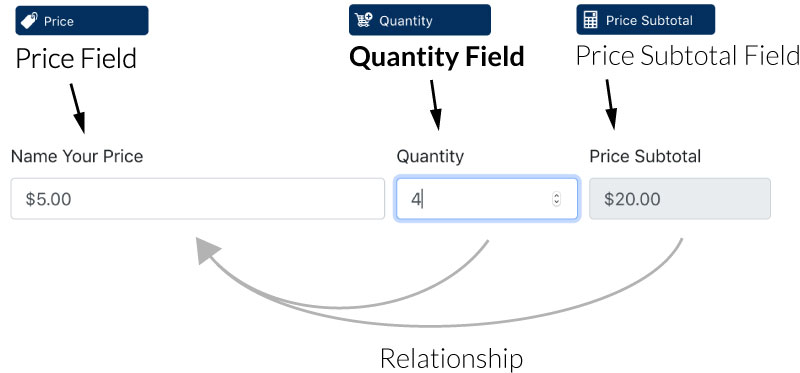 The Anatomy of a Quantity Field